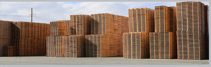 Wooden Pallets Manufacturers in India